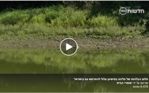 מים - חלום הבלהות של פלינט במישיגן עלול להתרחש בישראל