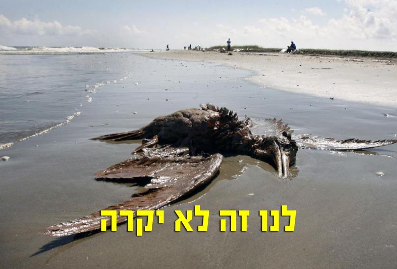 אסון אסדת לוויתן