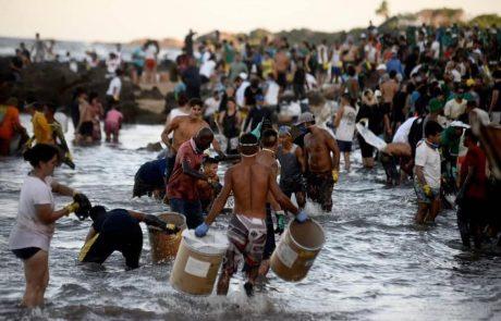 """אסון אקולוגי כבד – שפך הנפט הגולמי בברזיל שהתגלה בסוף אוגוסט מזהם מעל 2250 ק""""מ רצועת חוף"""